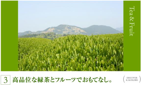 高品位な緑茶とフルーツでおもてなし。